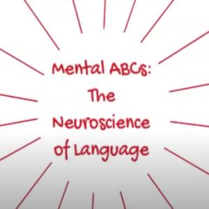 Neuroscience of Language